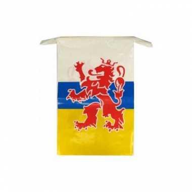 2x stuks limburgse vlaggenlijnen van 10 meter carnavalskleding