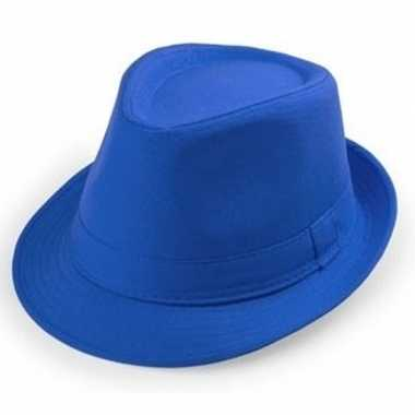 Blauwe trilby hoedjes voor volwassenencarnavalskleding