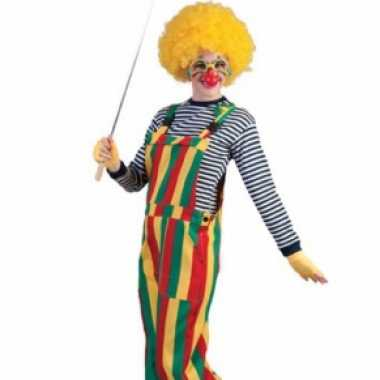 Carnaval clown tuinbroekcarnavalskleding