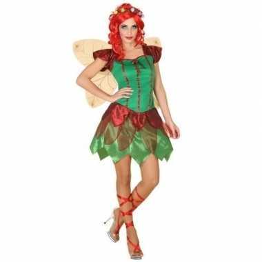 Elfen jurkje voor damescarnavalskleding