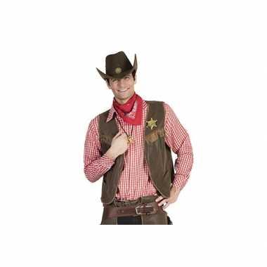 Rood geruit cowboy overhemd voor herencarnavalskleding