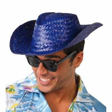 Strohoed blauw voor toppers 2019 voor volwassenencarnavalskleding