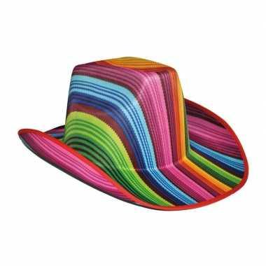 Vrolijk gekleurde cowboyhoedcarnavalskleding