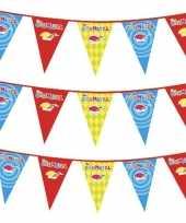 3x carnaval versiering slinger carnavalskleding