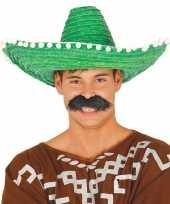 Verkleed sombrero groen 50 cm mexico voor volwassenen carnavalskleding
