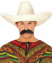 Verkleed sombrero rood 50 cm mexico voor volwassenen carnavalskleding 10148187